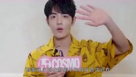 杨紫肖战VS赵丽颖王一博,收视女王搭配流量小生,谁将更胜一筹?