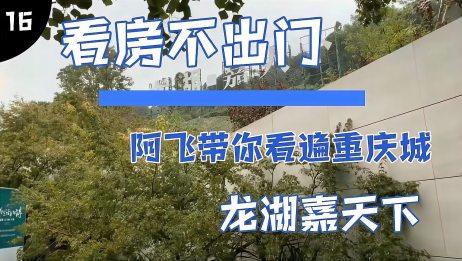重庆的巴南区龙湖的楼盘,几十万就可以上车,你会选择这里吗