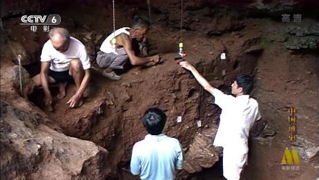 中国通史:农业起源专家凭借直觉,竟然真的在中国找到水稻起源!