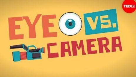 【TedED】眼睛与照相机 Eye VS Camera