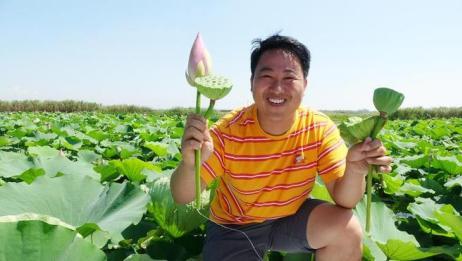 我是小熙:泛舟洪泽湖面,各种水产琳琅满目,现摘莲子吃过瘾