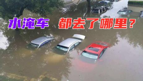 这么多水淹车都去了哪里?内行人告诉你真实情况,学会避免被坑