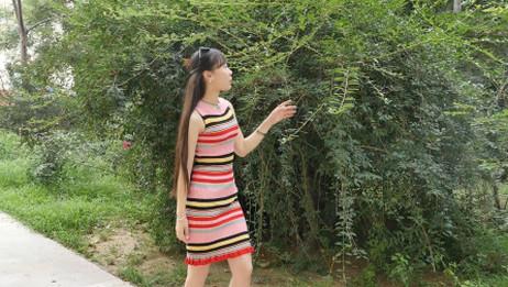 小黄飞演唱《江南style》东北版《满身囔囔踹》, 歌词搞笑, 送给大家