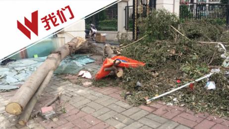 男子台风中推货车被压死 目击者:我们让他走 他不走