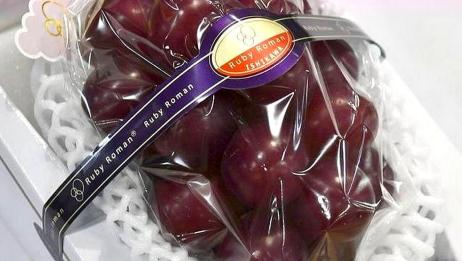 天价水果你见过吗?日本高级葡萄一串120万,网友:吃了能成仙?
