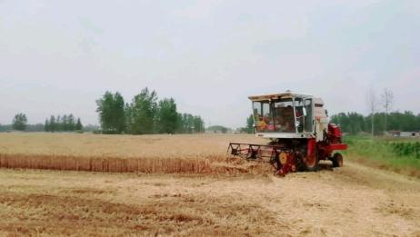 丰收带给农民朋友的喜悦