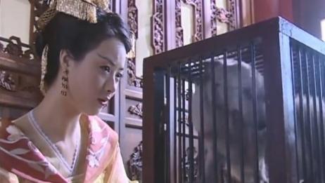 聊斋:当皇妃就是好,蛇精都不用吸精气了,嘴馋就让皇上炖灵狐吃