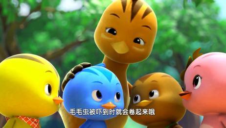 萌鸡小学堂:毛毛虫胆子小,麦奇不要吓唬他,交朋友不能心急