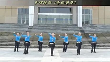 紫蝶广场舞 为你等待