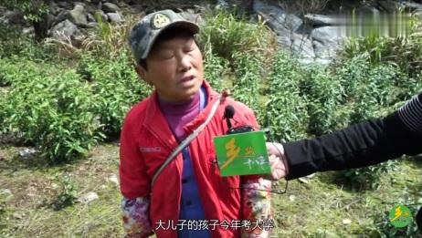 农村60岁大妈为补贴三个儿子,上山帮人采茶叶,可怜天下父母心