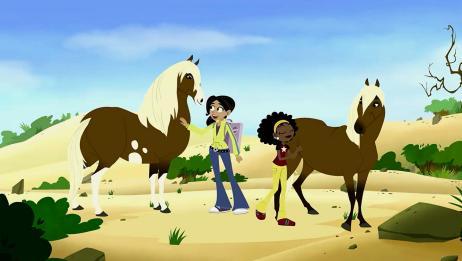 动物兄弟:阿维娃喜欢小野马,看见就走不动,好想把他带回家啊