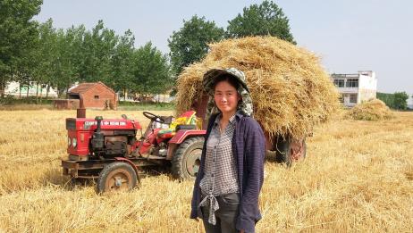 麦子割完了,麦秆让人发愁,20亩麦秆不拉走,就没办法种玉米