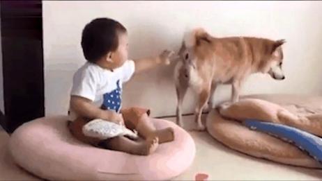 """搞笑视频:二狗子你别""""放屁"""",笑死我了!"""