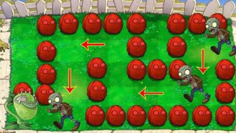 植物大战僵尸:食人花与红色坚果墙 vs 僵尸