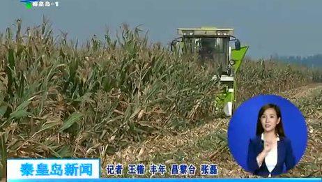 农机合作社助力农业发展