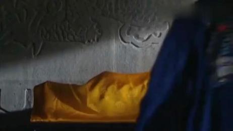 雍正王朝:康熙不愧千古一帝,临死前一招让隆科多乖乖保四爷继位