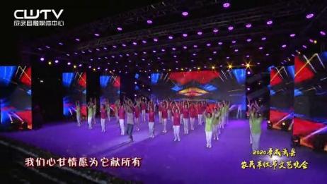 农民丰收节:歌舞《丰收》