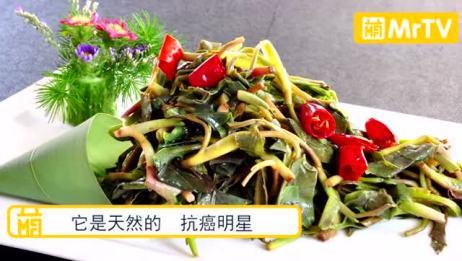 这道农村的野菜可直接杀死癌细胞和阻碍癌细胞发育,但是味道难吃