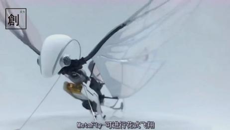 无人机过时了!试试这个扑翼机,模拟生物,扇动翅膀飞行