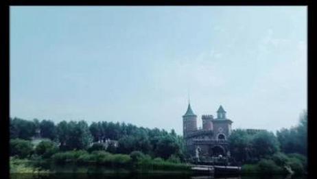 【楠楠蘑菇花】伏尔加庄园—手帐过程