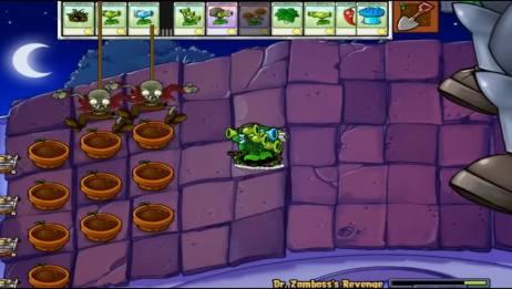 食人花户口救下小坚果 植物大战僵尸游戏