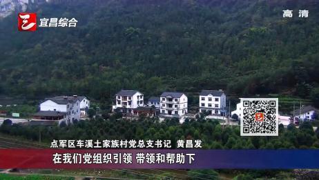 宜昌:党建引领促振兴 土家山村产业兴