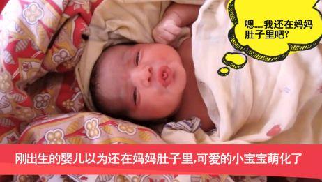 刚出生的婴儿以为还在妈妈肚子里,可爱的小宝宝萌化了