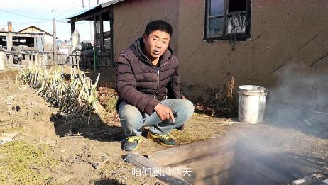 菜窖里咋还冒烟了?东北农村开始储存越冬蔬菜,吉祥收拾一下菜窖