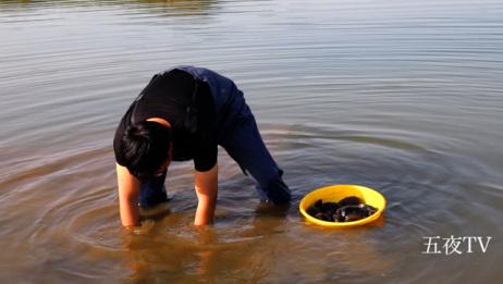 这么大的河蚌见过吗?强子沙河一会摸一盆,大家说怎么做好吃啊?