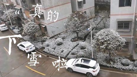 郴州安仁真的下大雪啦!好多年不见雪了,白茫茫的一片真漂亮