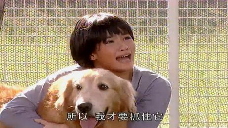 爱在旅途:美女不想见到继母,临时有了这主意,狗狗又一次背了锅