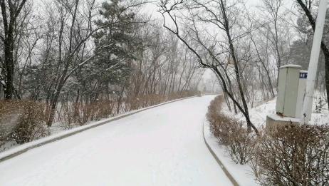 雪地里骑车简直不要太爽