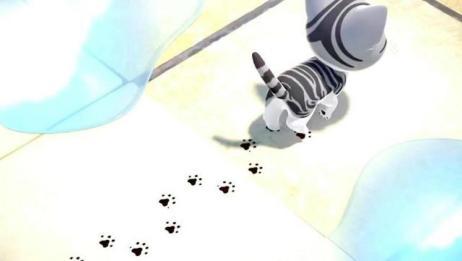《甜甜私房猫》小奇今天玩得好开心,看你把脚弄得也太脏了吧!