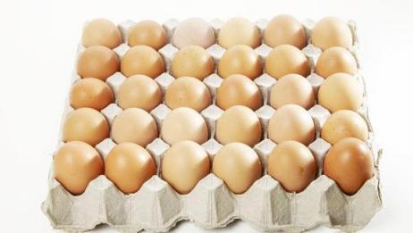 鸡蛋托盘别扔了,想不到还有这三大用途,丢掉就浪费了