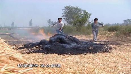 农民家里草垛着火,老农拿工具戳一戳被吓坏了,直接找警察来