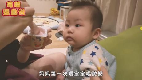 宝宝第一次喝酸奶,尝了一口还继续要,边喝边皱眉的模样太可爱了