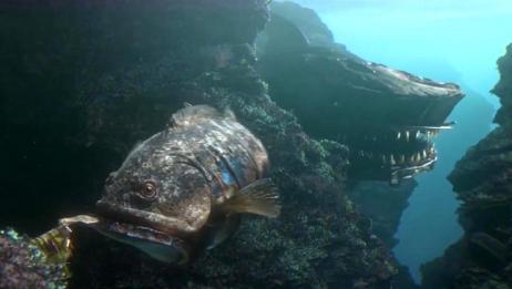 动画短片《被污染的水世界》,海底出现变异鲨鱼王,成为海洋霸主