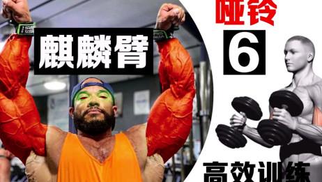 哑铃锻炼手臂肌肉正确方法,6个动作让你拥有饱满手臂!