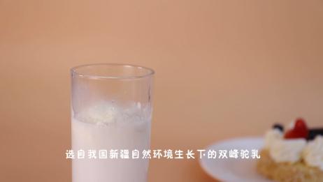 来自新疆的纯骆驼奶粉