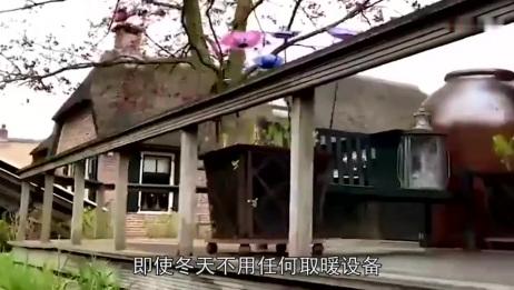 现在农村都建泡沫房,这泡沫对人体有没有危害呢