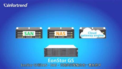 EonStor GS/GSe统一存储简介