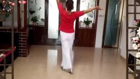 八景礼港开心就好舞蹈队 书房门前一枝梅 表演 团队版