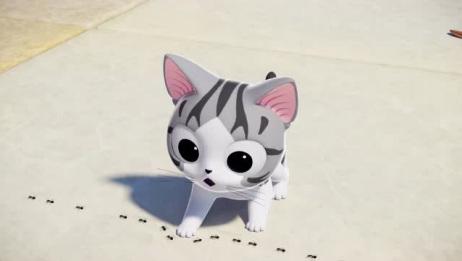 《甜甜私房猫》小奇真的太坏了!竟然用脚挡住了小蚂蚁的去路!