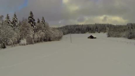 冬天大雪过后,到处都是白茫茫的一片,美丽极了
