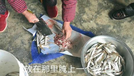 这种鱼比青菜还便宜,5块钱买了100多条,做小鱼干很好吃