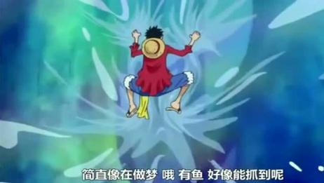 海贼王:路飞索隆被乔巴暴打,看了他们干的蠢事,真是活该!