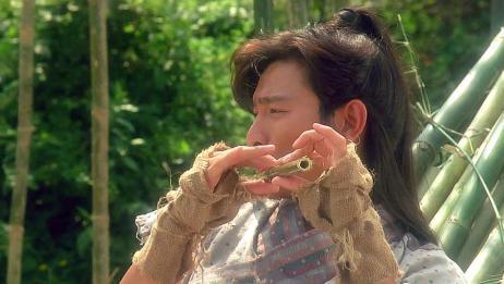 战神传说:阿飞正在砍竹,突然发现不对劲,立马跳到树上查看情况
