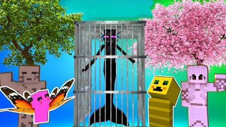 MC动画:末影人变成了美人鱼