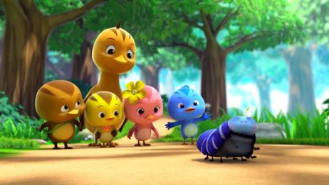 萌鸡小学堂:毛毛虫好可爱啊,在地上抻懒腰,惹萌鸡们集体围观