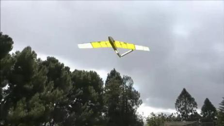 柔性机翼扑翼机,怎么做到的,谁来解释下